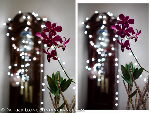 Fuji XF 35mm at F2.8 vs. Panasonic 25 at F1.4 Summilux