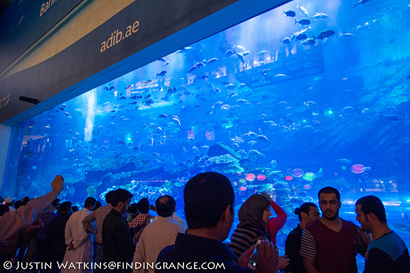 Dubai-Aquarium-Dubai-Mall-Olympus-OM-D-E-M5-12mm-F2.0