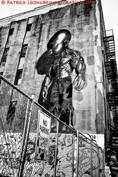 Fuji X-T1-XF-18-55mm-Graffit-Art-New-York-City-LARGE-3