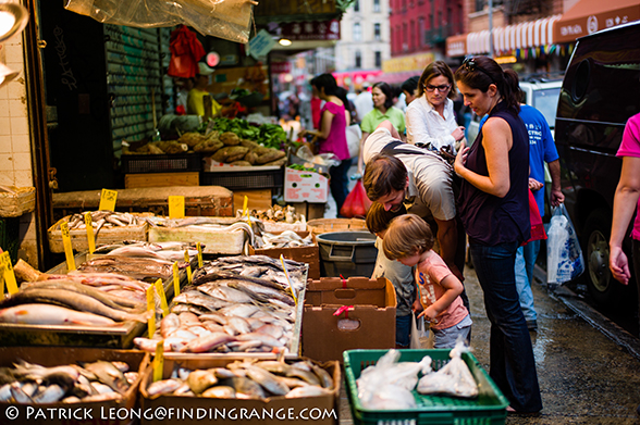 Leica-M9-50mm-Summilux-ASPH-Chinatown-Fish-Market