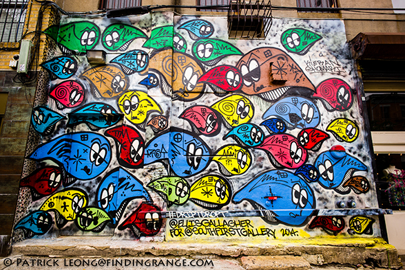 Leica-M-Typ-240-Street-Art-Graffiti-Williamsburg-Brooklyn