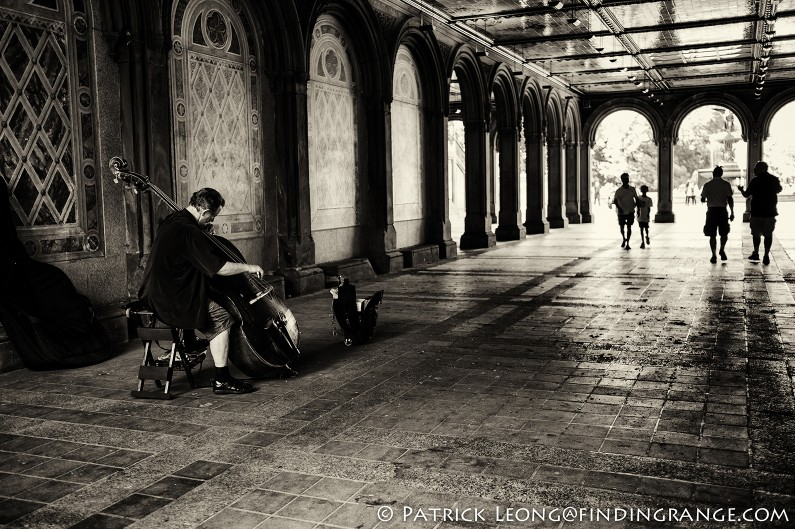 Leica-M9-35mm-Summicron-ASPH-Central-Park-Bethesda-Terrace-Cellist
