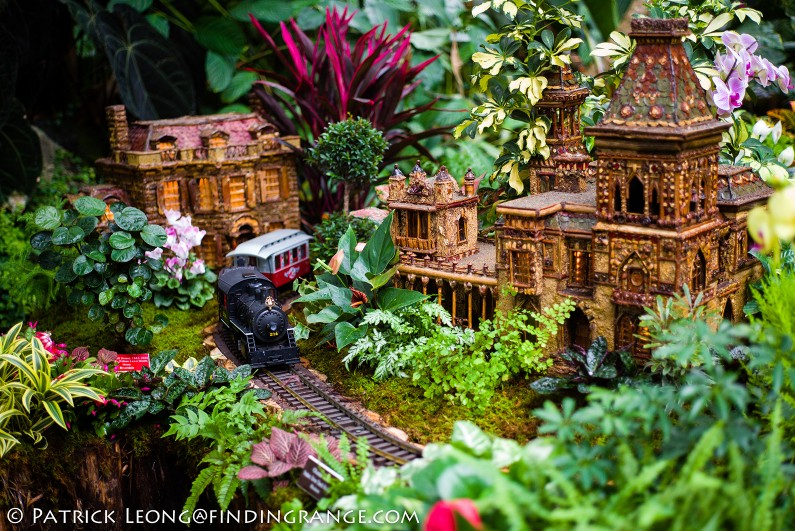 Holiday-Train-Show-New-York-Botanical-Garden-Leica-M-Typ-240-50mm-Summicron-5