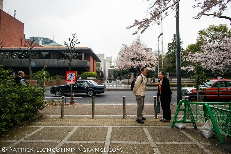 Leica-M-Typ-240-21mm-Summilux-ASPH-Cherry-Blossom-Kitanomaru-Park-Chiyoda-Tokyo-Japan-1