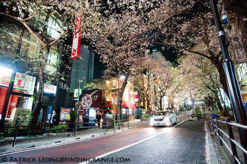 Leica-M-Typ-240-21mm-Summilux-ASPH-Shibuya-Tokyo-Japan-Street-Candid-Cherry-Blossoms