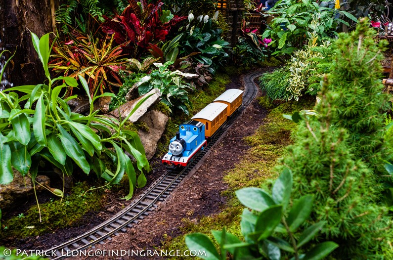Leica-X-Typ-113-Holiday-Train-Show-Botanical-Garden-NY-2