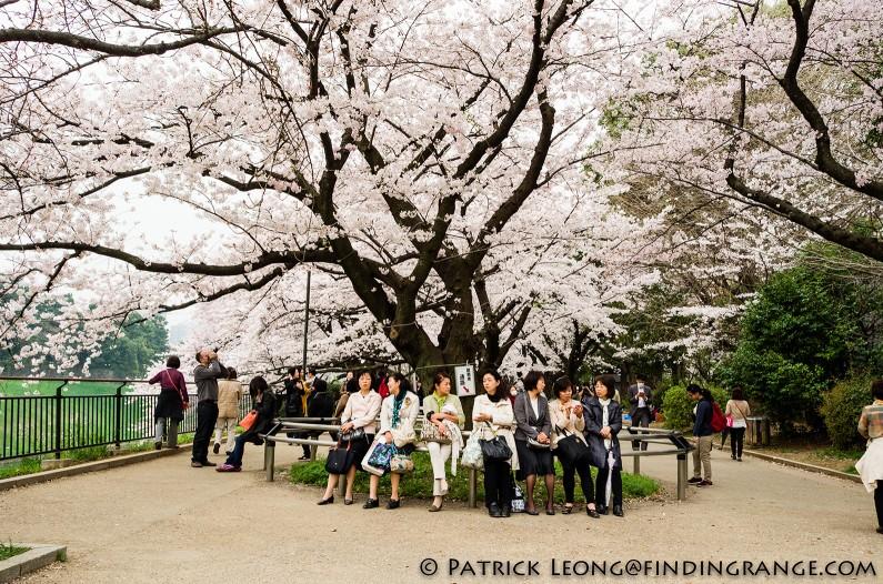 Leica-X-Typ-113-Kitanomaru-Park-Chiyoda-Tokyo-Japan