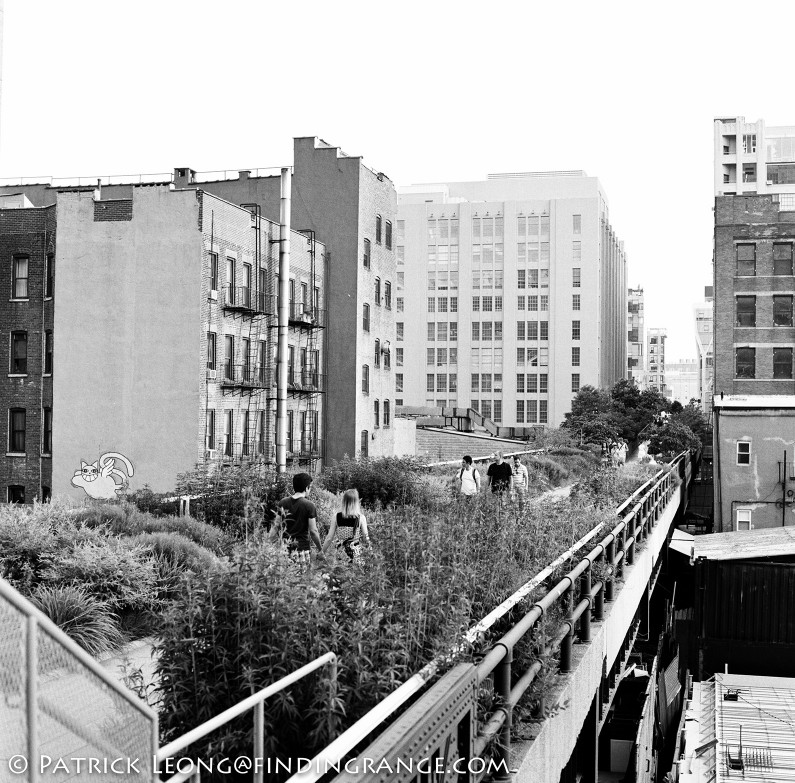 Hasselblad-503cw-Millennium-80mm-Planar-New-York-City-Chelsea-High-Line-2