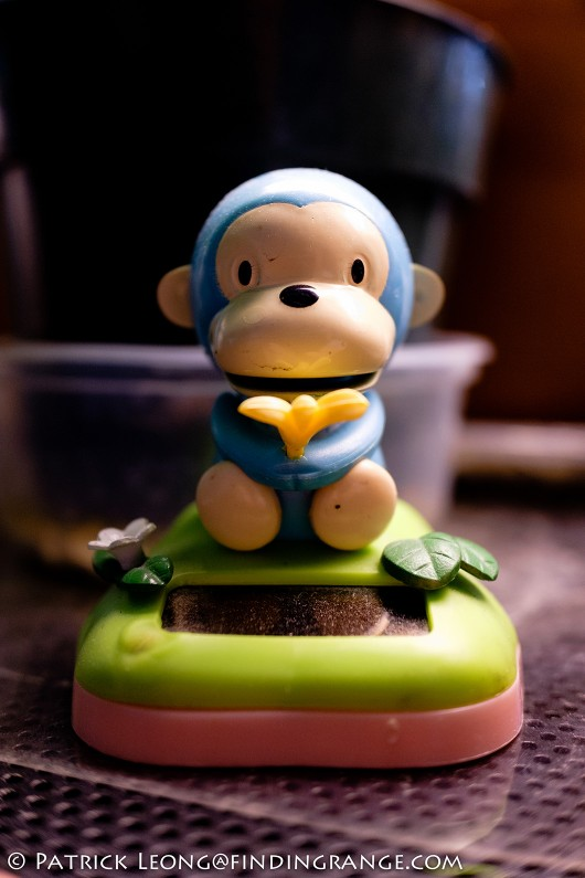 Fuji-X70-Toy-Monkey-Macro