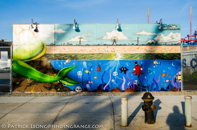 Leica-X-Typ-113-Coney-Island-Coney-Art-Walls-2