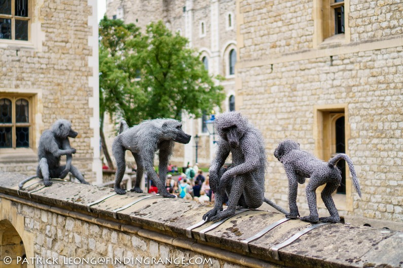 Sony-E-35mm-f1.8-OSS-Lens-Review-a6300-London-England-Tower-of-London-Monkey