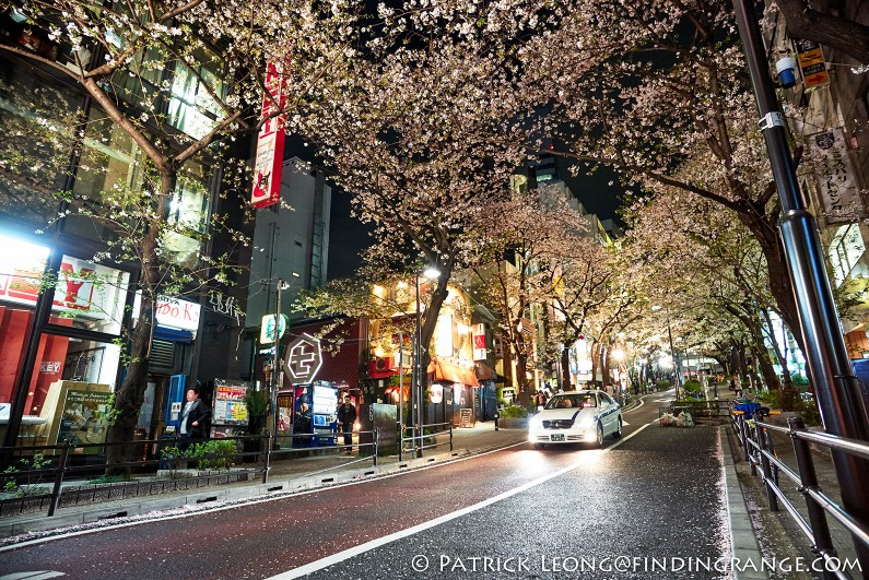 Leica-M-240-21mm-Summilux-M-f1.4-ASPH-Cherry-Blossom-Tokyo-Japan
